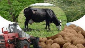 Весовое оборудование для сельского хозяйства