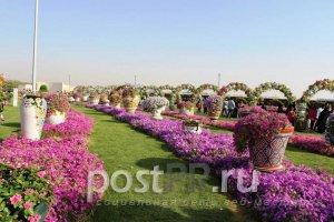Цветочный сад чудес стоит, чтобы в нем побывать