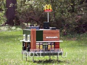 Ресторан Mcdonald's есть теперь и у пчел!